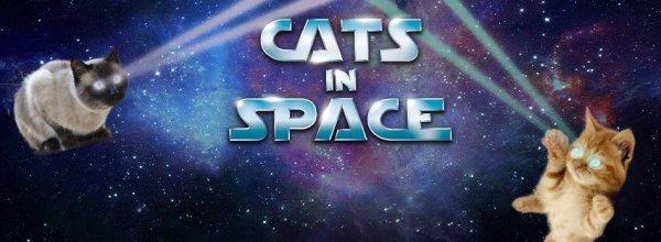 Cat's In Space