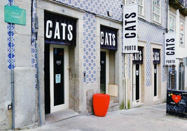 CATS Porto Hostel