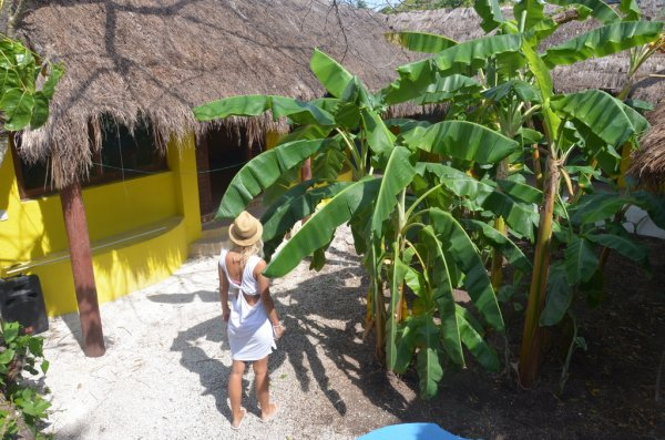 Hostal Big Fish Cozumel Dive