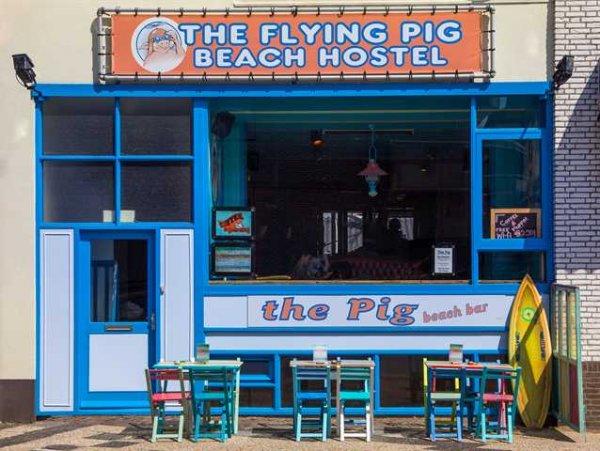 The Flying Pig Beach Hostel