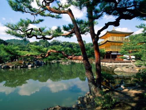 54 Best Things To Do In Japan For An Unforgettable Trip