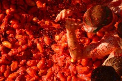 Das beste Festival - La Tomatina (big)
