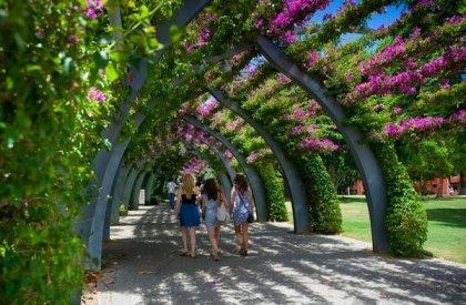 Parklands Brisbane