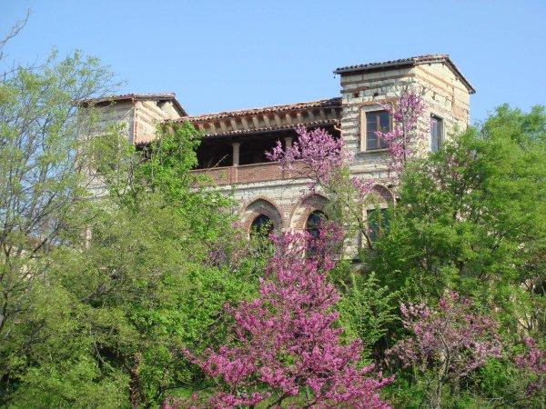Il Castello di Frassinello