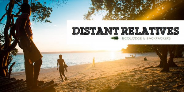 Distant Relatives Ecolodge and Backpackers