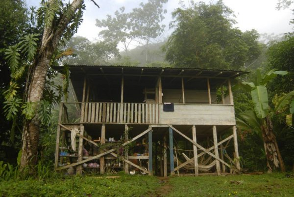 Hostal Bolita Rainforest