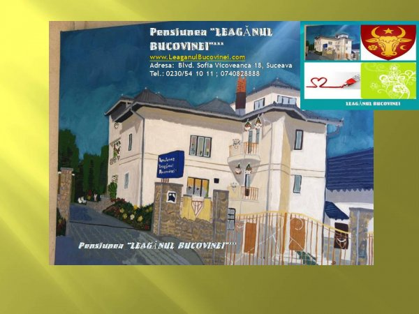 Leaganul Bucovinei Pension***
