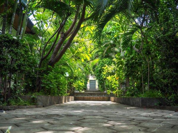 Scuba Tribe Bali